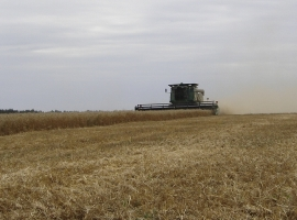 Harvest Support Russia (2)