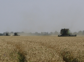 Harvest Support Russia (8)